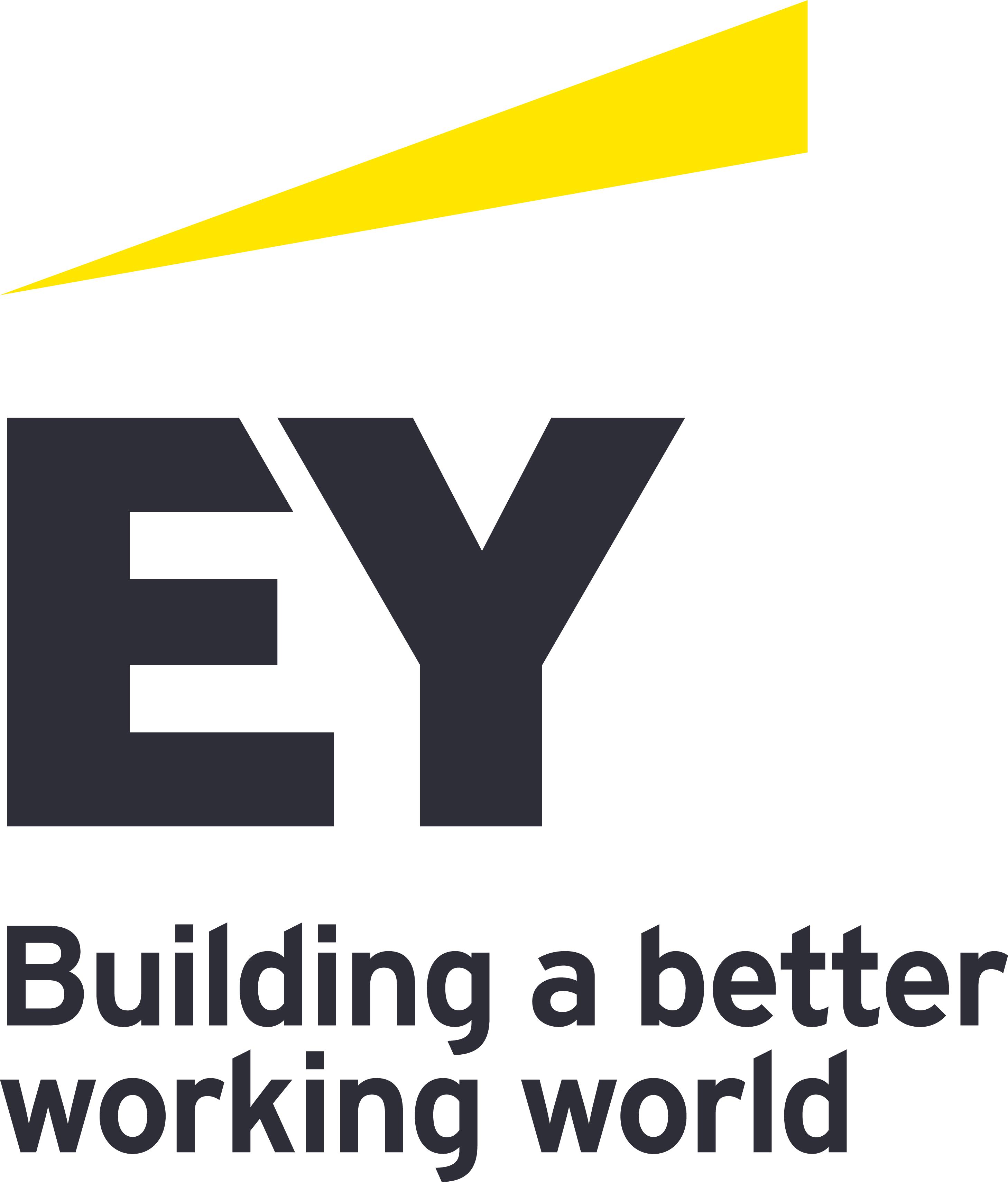 Ernst & Young ServicegmbH & Co OG Steuerberatungsgesellschaft